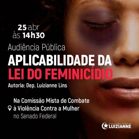 apicabilidade lei feminicidio luizianne